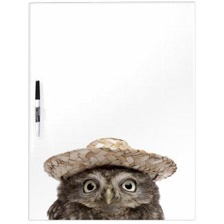 Little Owl wearing a straw hat - Athene noctua Dry-Erase Whiteboard