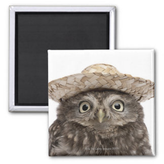 Little Owl wearing a straw hat - Athene noctua Square Magnet