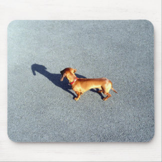 little pet mouse mat