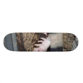 Little Piggies Skate Board Deck