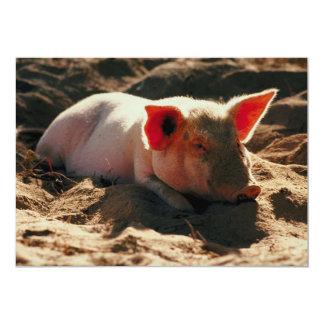 Little Piggy 13 Cm X 18 Cm Invitation Card