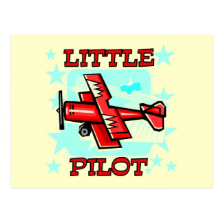 Little Pilot Tshirts and Gifts Postcard
