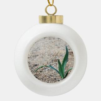 Little Plant Ceramic Ball Christmas Ornament