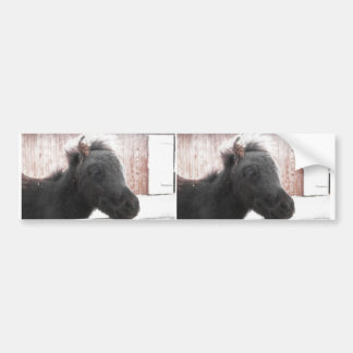 Little Pony Bumper Sticker