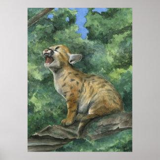Little Puma Poster