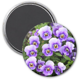 Little Purple Pansies Magnet