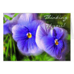 Little Purple Pansies Note Card; Frosted Pansies