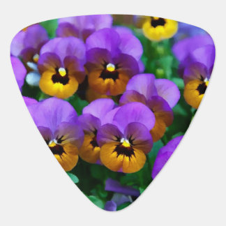 Little Purple Pansies Trimmed in Yellow Gold Guitar Pick