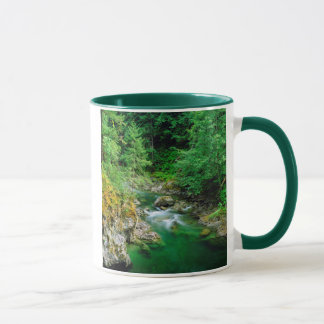 Little Qualicum River Mug