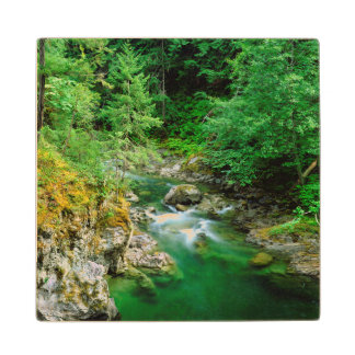 Little Qualicum River Wood Coaster