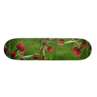 Little_Rain_jpeg Skate Board