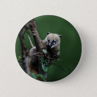 Little rascals coati - lemur 6 cm round badge
