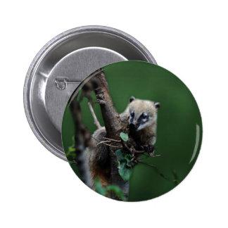 Little rascals coati - lemur pinback buttons