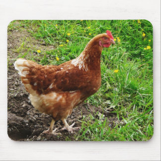 Little Red Chicken  - Free Range Egg Layer Mouse Mat