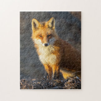 Little Red Fox Jigsaw Puzzle