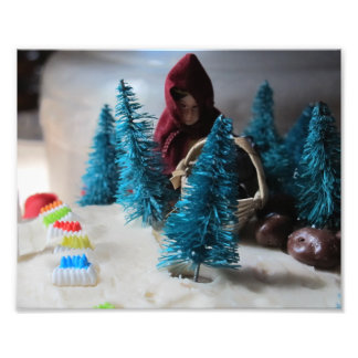 Little Red Riding Hood Cake, 8x10 phto Photograph