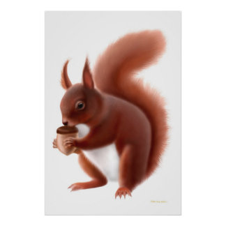 Little Red Squirrel Print