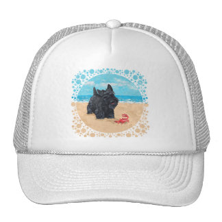 Little Scottie Finds a Crab at the Beach Hats