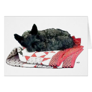 Little Sleeping Scottie Dog Card