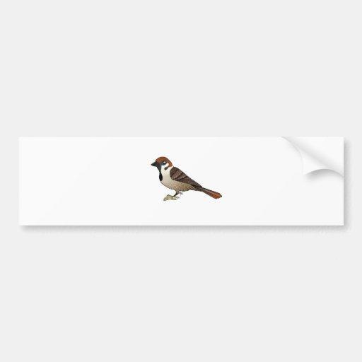 Little Sparrow Bumper Sticker