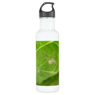 Little Spider 710 Ml Water Bottle