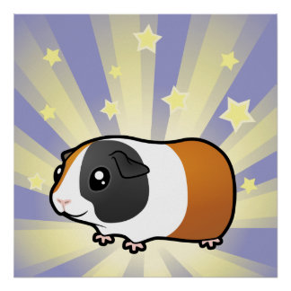 Little Star Guinea Pig (smooth) Poster