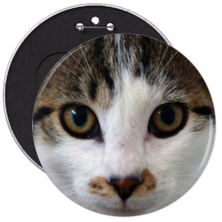 Little Tabby Face 6 Cm Round Badge