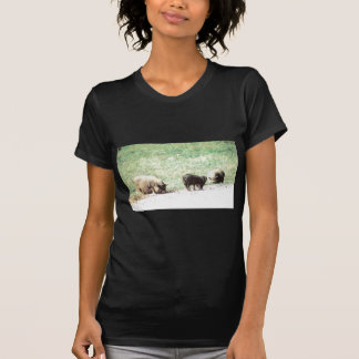 Little Wild Pigs Sketch T-Shirt