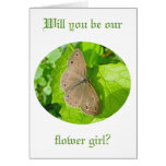 Little Wood Satyr Butterfly Coordinating Items Cards