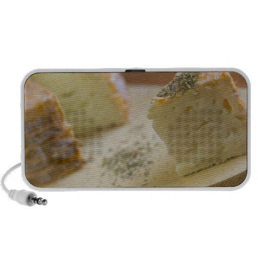 Livarot - Normandy - France - AOC cheese For iPhone Speaker