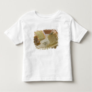 Livarot - Normandy - France - AOC cheese For Toddler T-Shirt