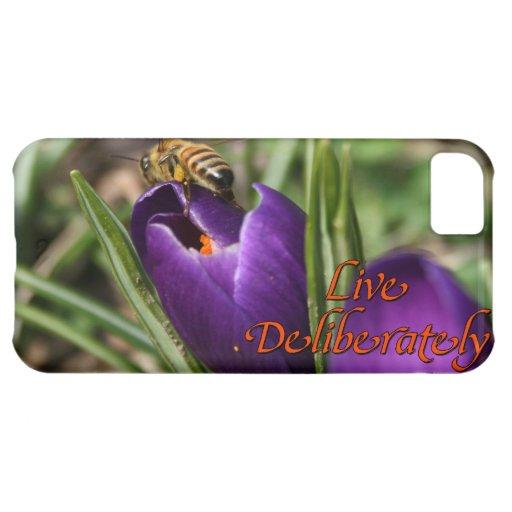 Live Deliberately w/honey bee pollinating Crocus iPhone 5C Cases