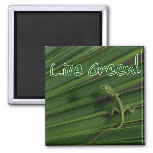 Live Green Lizard Magnet