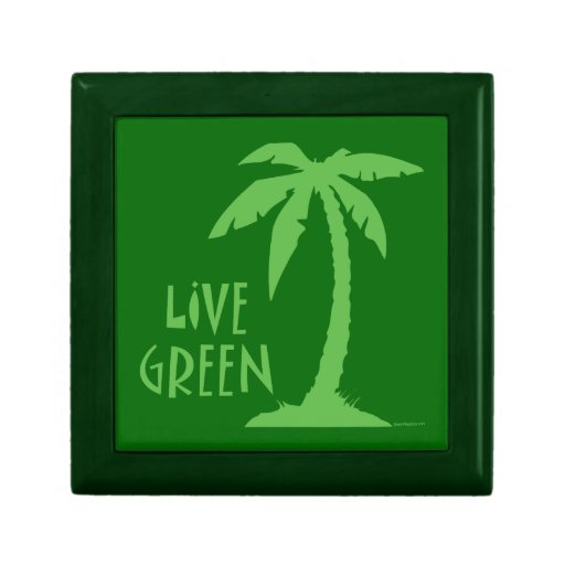 Live Green Palm Tree Small Square Gift Box