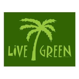 Live Green Tree Hugger Postcard