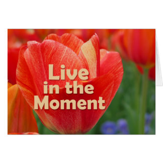Live in the Moment w/vibrant Tulip Note Card