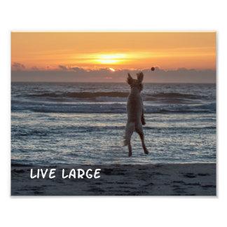 """Live Large"" Beach Sunset Photo Print (10"" x 8"")"