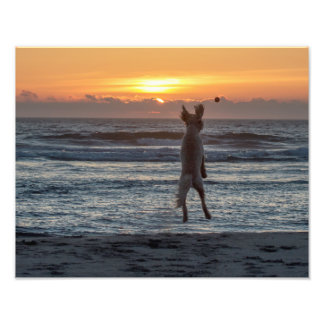 """Live Large"" Beach Sunset Photo Print (14"" x 11"")"
