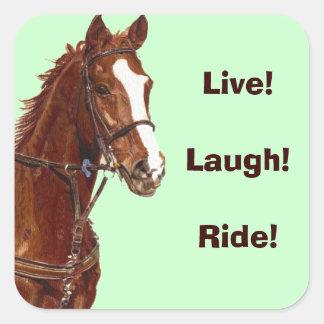 Live! Laugh! Ride! Horse Stickers