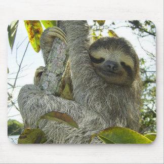 Live Life Like a Sloth Mouse Mat