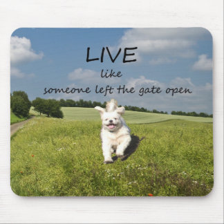 """Live Like Someone Left the Gate Open"" Mouse Mat"
