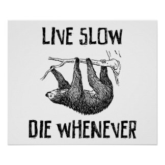 Live Slow, Die Whenever Poster