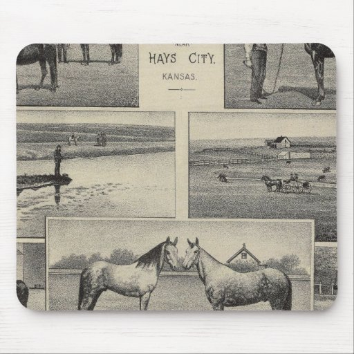 Live Stock in Kansas Mousepads