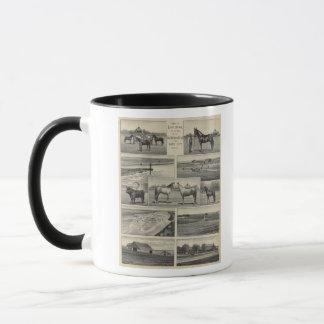 Live Stock in Kansas Mug