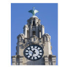 Liver Building, Cunard Building, Liverpool, Postcard