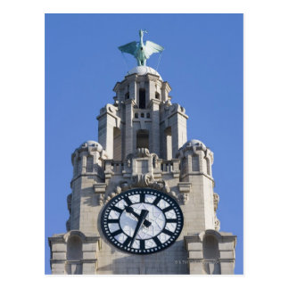 Liver Building, Cunard Building, Liverpool, Postcard