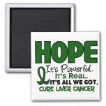 Liver Cancer HOPE 1 Square Magnet