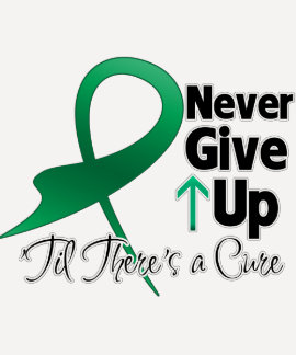 Liver Cancer Never Give Up Shirt