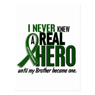 Liver Cancer NEVER KNEW A HERO 2 Brother Post Card