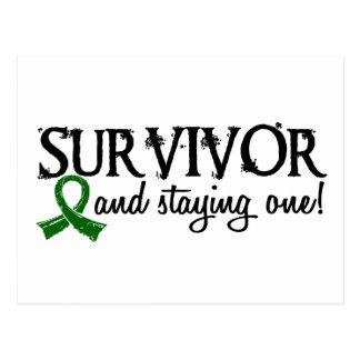 Liver Cancer Survivor 18 Postcard